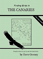 Finding Birds in the Canaries