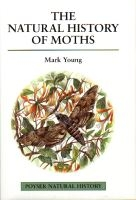 The Natural History of Moths