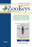 An illustrated key to the cuckoo wasps (Hymenoptera, Chrysididae) of the Nordic and Baltic countries, with description of a new species