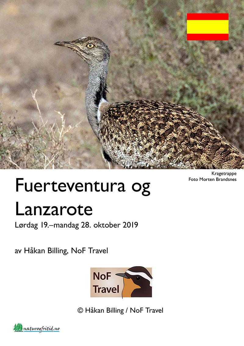 Fuerteventura og Lanzarote