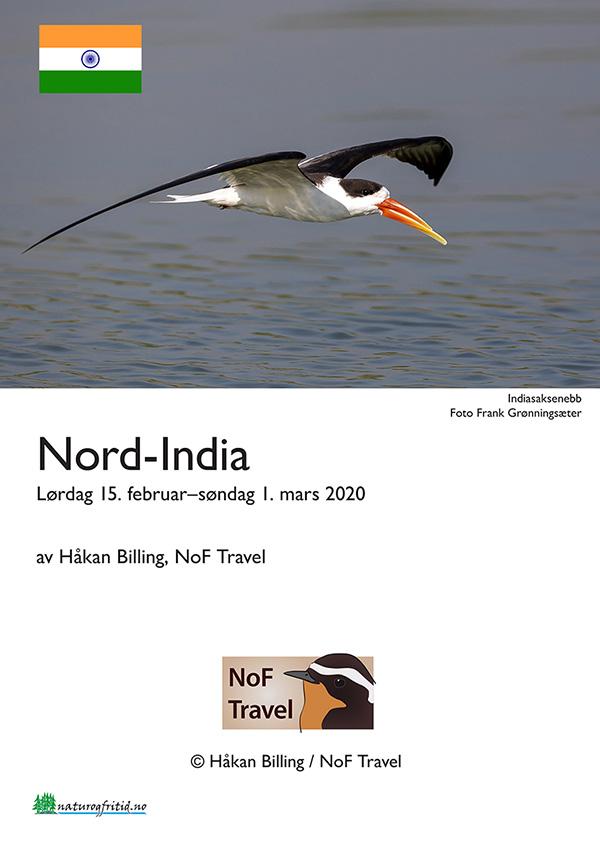 Nordlige India 2020