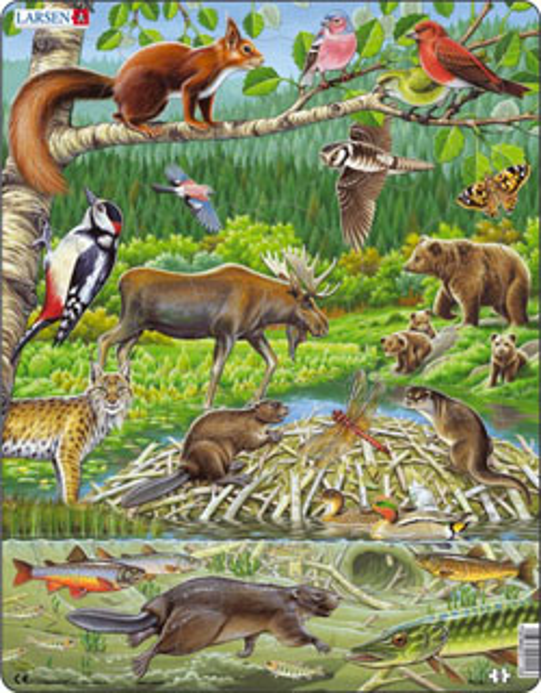 Puslespill - Nordisk skog med dyr