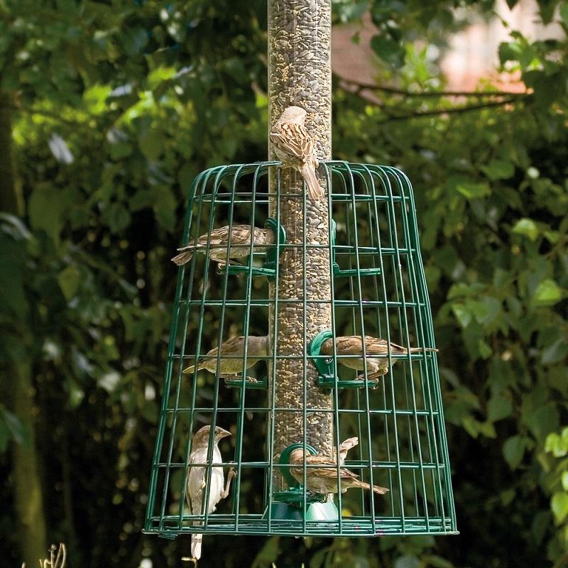 Frøautomat med beskyttelse for småfugler