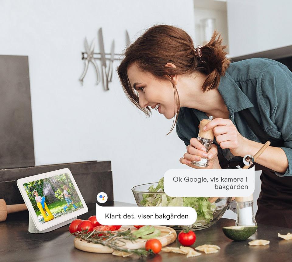 Reolink og Google Assistant