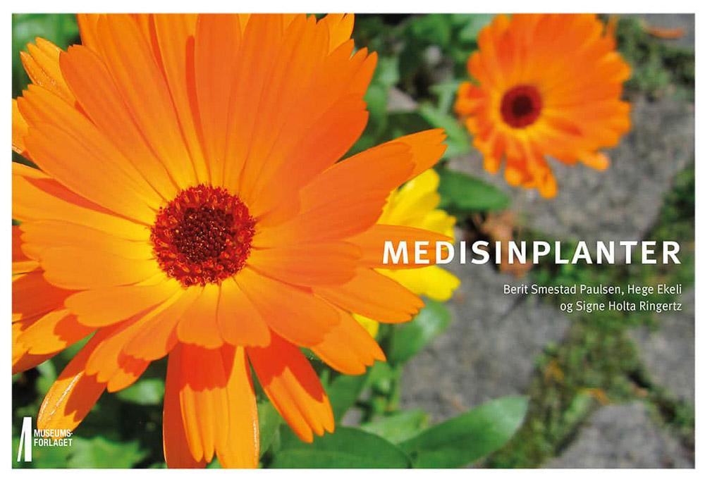 Medisinplanter Helsebringende vekster i naturen