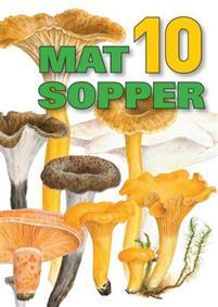 10 matsopper
