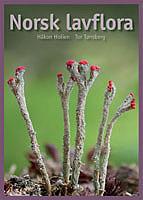 Norsk lavflora i farger