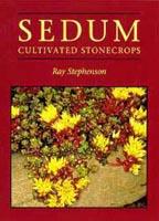 Sedum - cultivated stonecrops