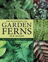 Encyclopedia of Garden Ferns