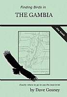 Finding Birds in Gambia