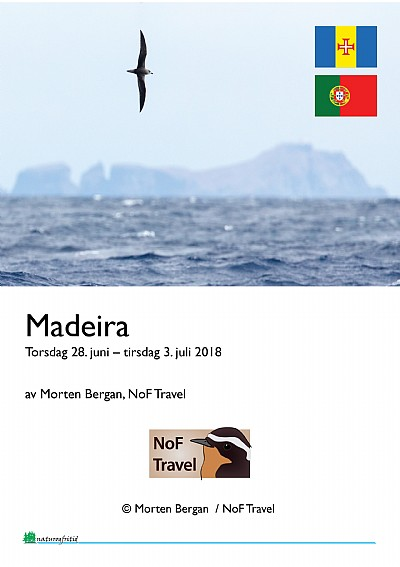 NoF Travel turrapport - Madeira 2018